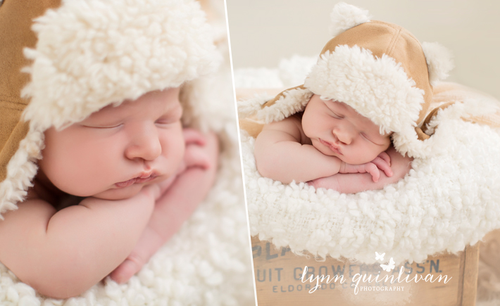 Massachusetts Newborn photographer