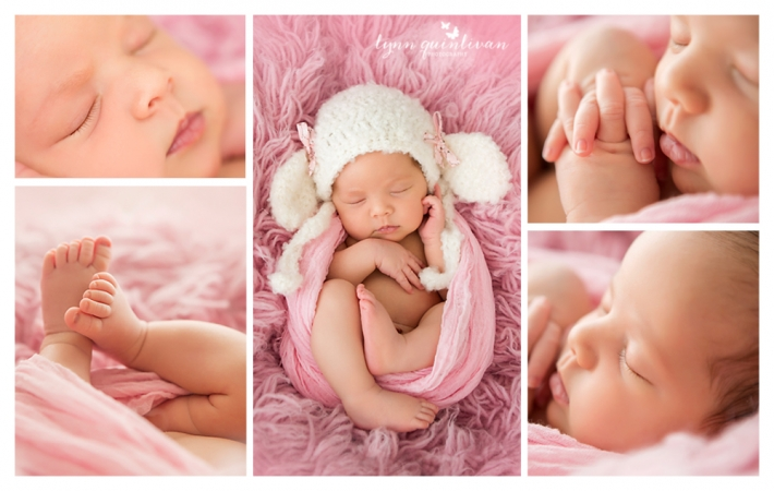 MA Newborn Photography