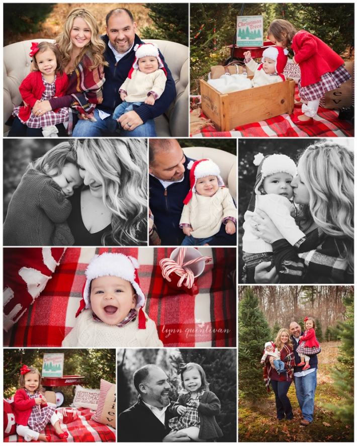 MA Holiday Mini Session