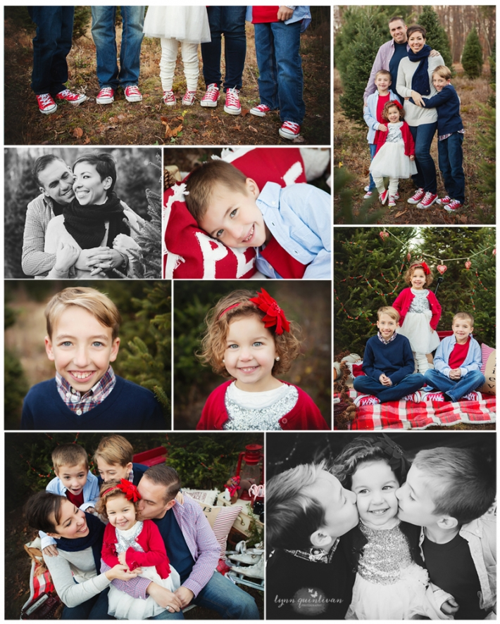 MA Christmas Mini Session