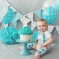 Central MA Premier First Birthday Photographer