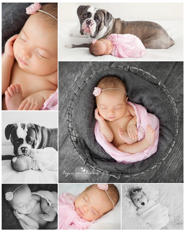 Mass Signature Newborn Photo Session