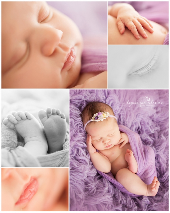 Westborough MA Newborn Pictures