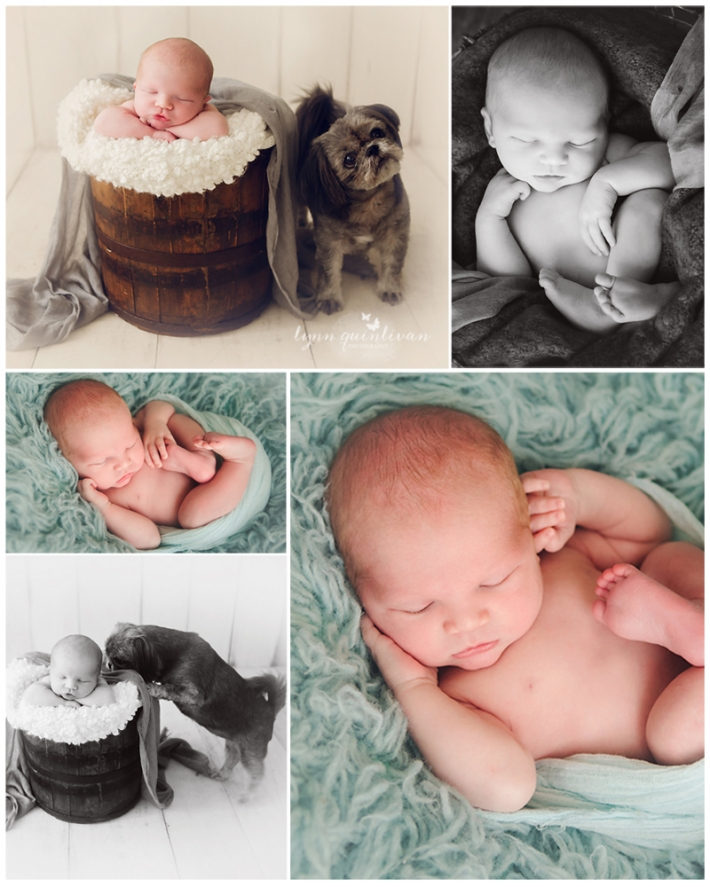 New England Baby Photography