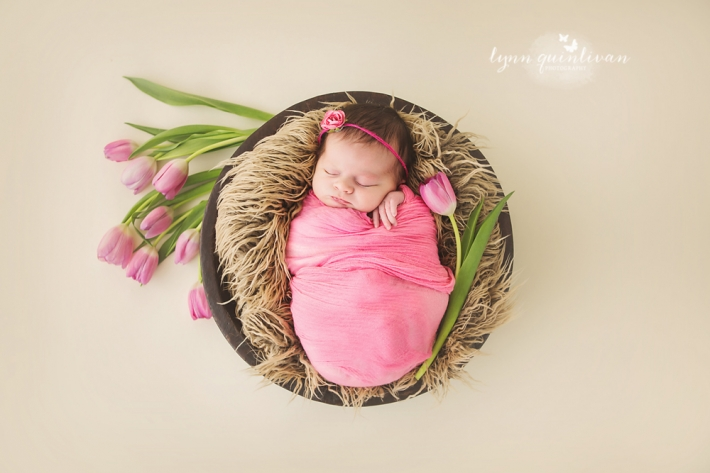 Massachusetts Newborn Portrait Studio