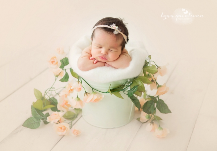 Mass Newborn Baby Photographs