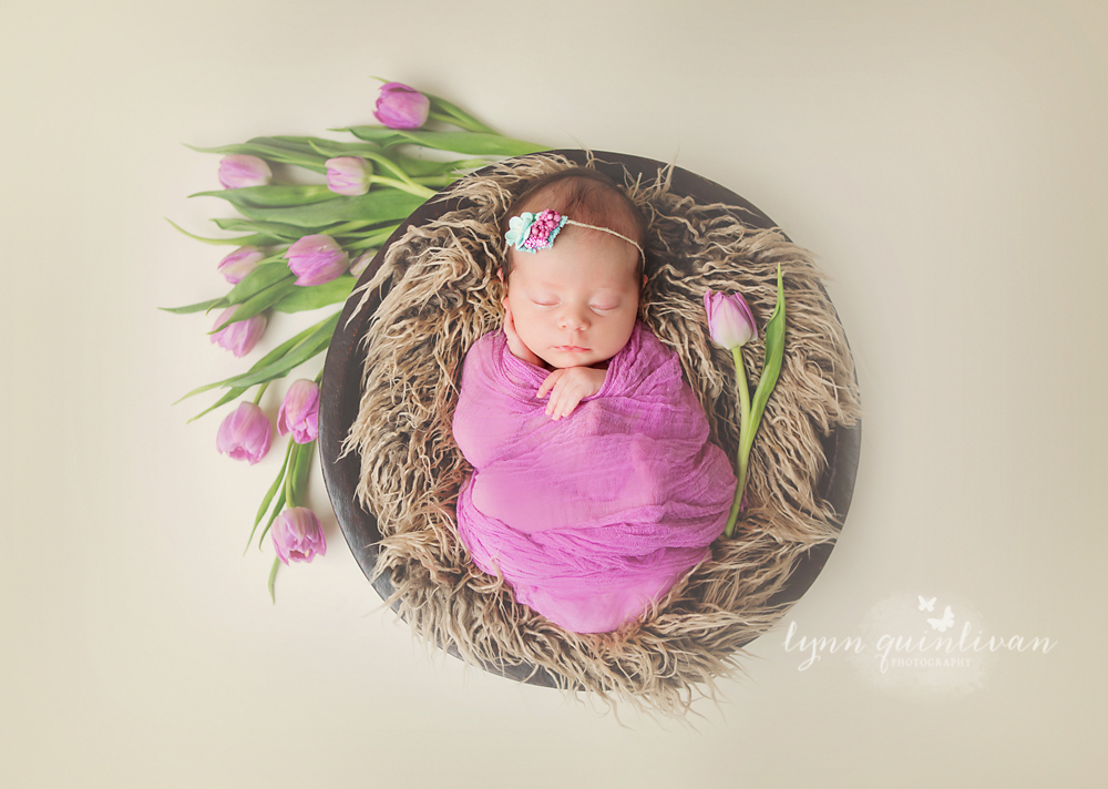 Newborn Photography in Boston MA