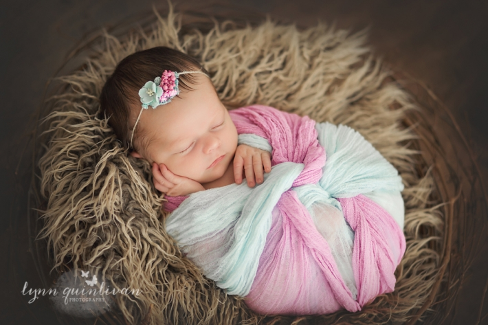Newborn Photographer in Central MA