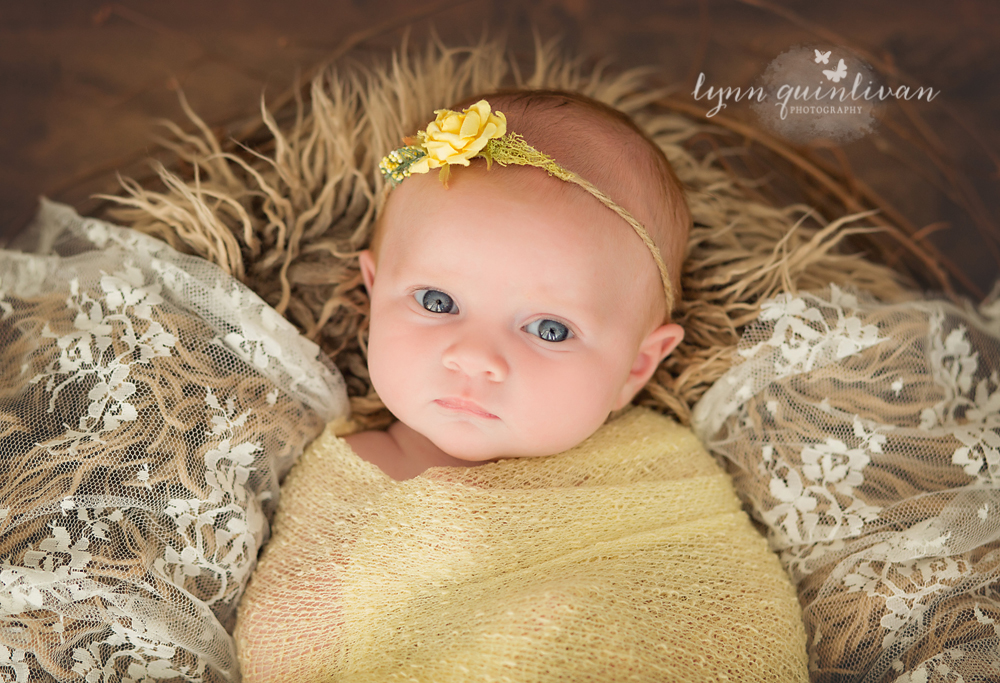 Newborn Photographer About Me