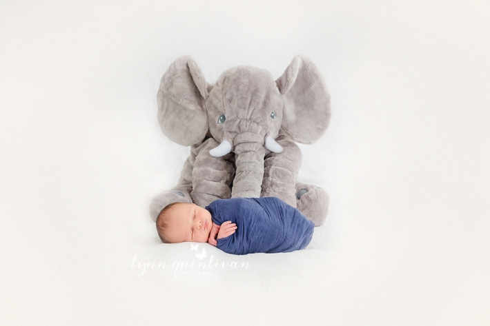 Central Mass Newborn Photography
