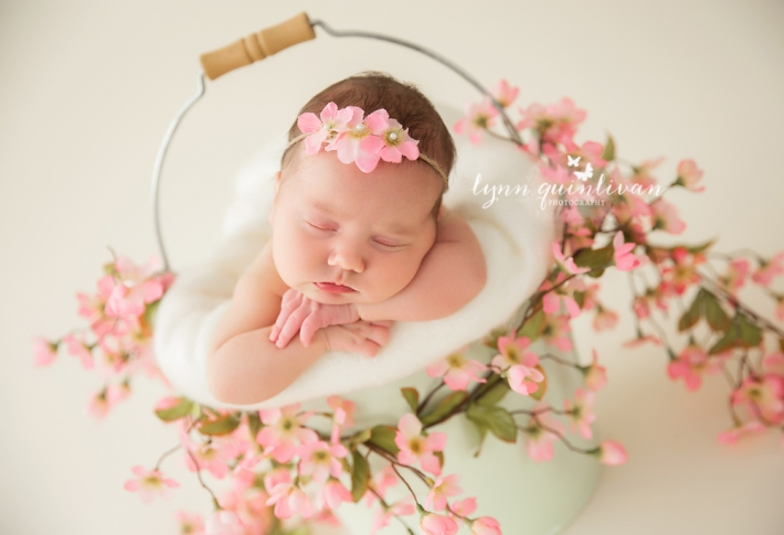 Massachusetts Newborn Photography