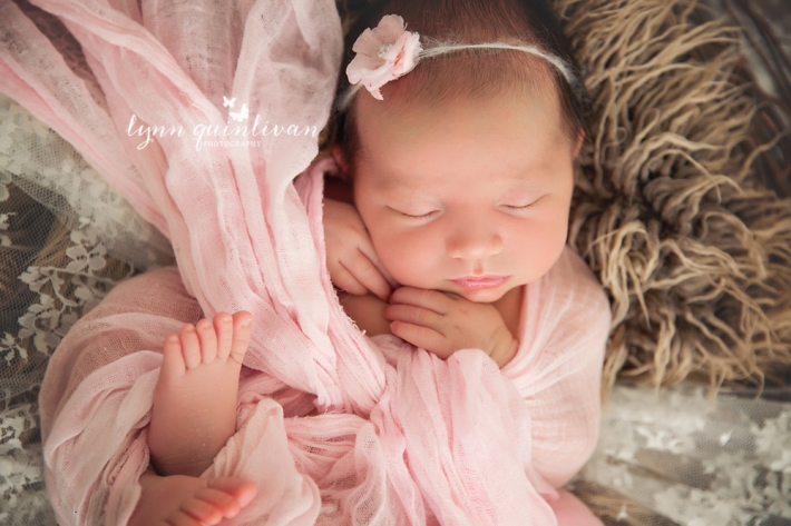 Newborn Baby Photos in MA