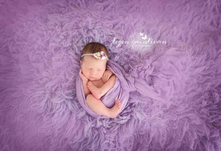 Newborn Photographer in Boston MA