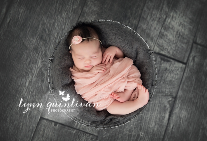 MA Newborn Baby Photography
