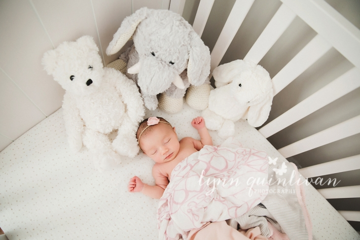Massachusetts In Home Newborn Photography